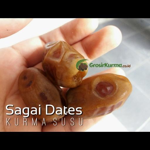 Sagai (1 Kg) – 1 Pack