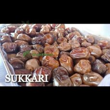 Sukkari GK 56
